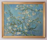 Frame Blossoming Almond Tree
